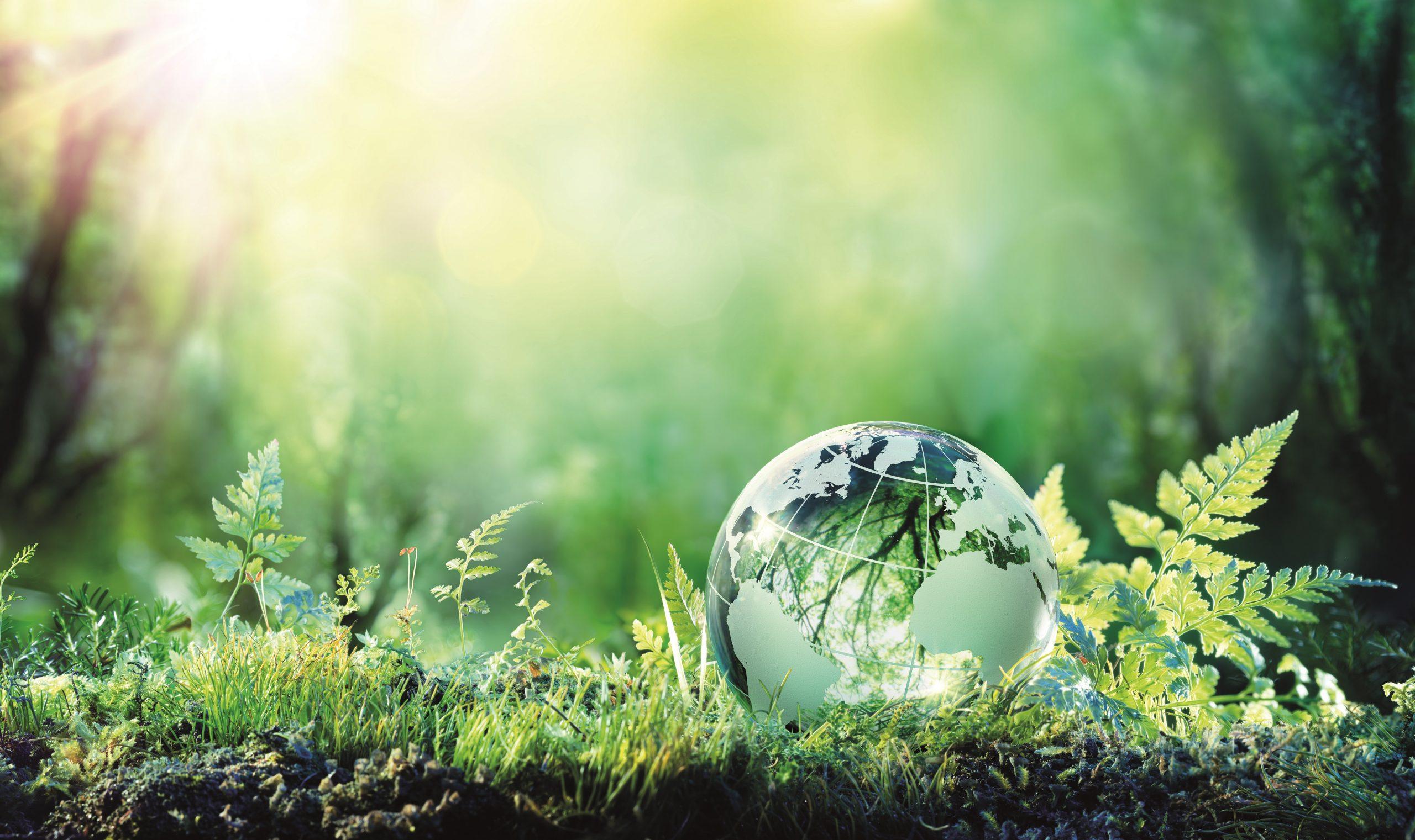 Tag der Erde: Gib dem Zustand unseres Planeten eine Stimme
